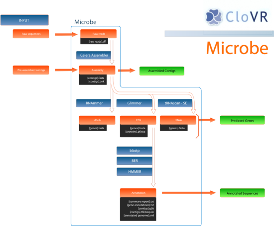 Microbe_flowgram
